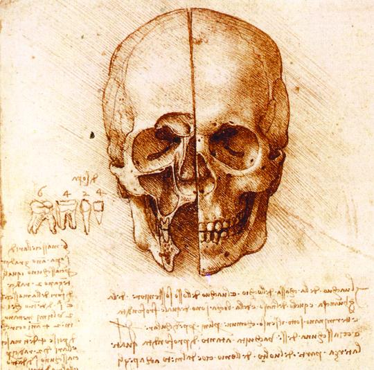 Os Cadernos Anatômicos de Leonardo da Vinci